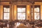 Cafeteria pecera, Madrid